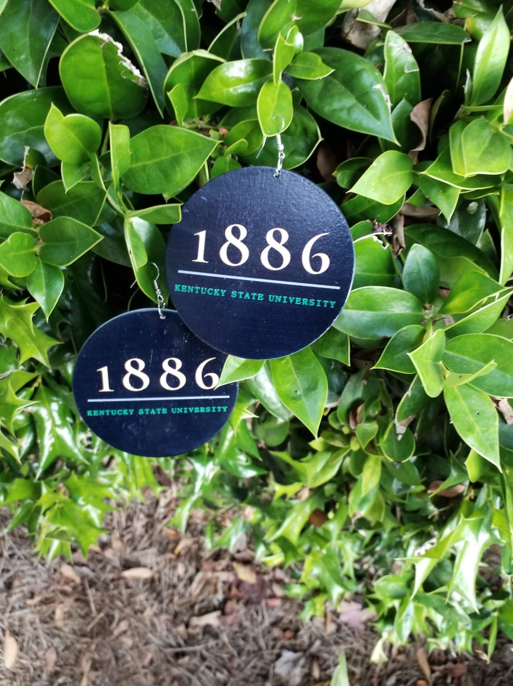 Image of 1886 Bred