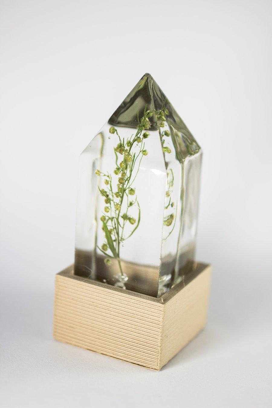 Image of Wormwood (Artemisia absinthium) - Floral Prism Light