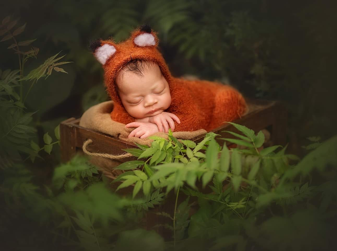Image of Newborn fox outfit. Made to order