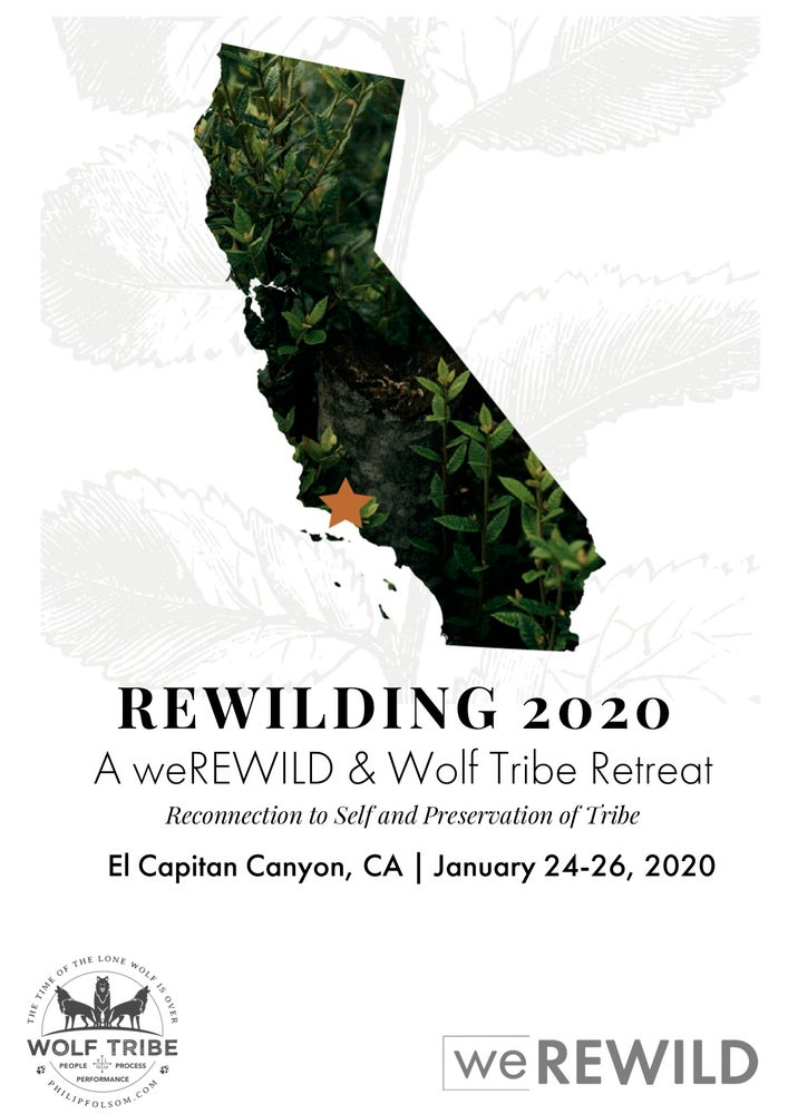 Image of Rewilding Retreat 2020 - Grey Wolf (Private cabin)