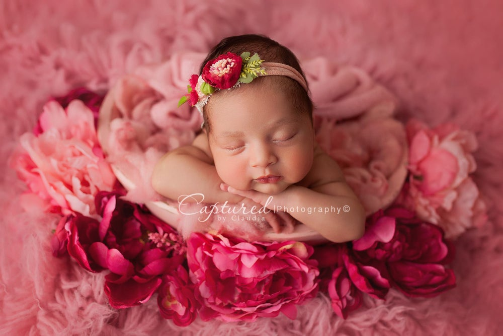 Image of Newborn, Sibling & Parent Collection - 30% Deposit