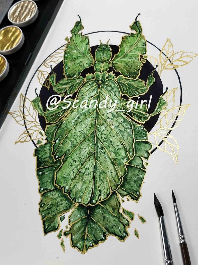Image of Original Leaf Insect