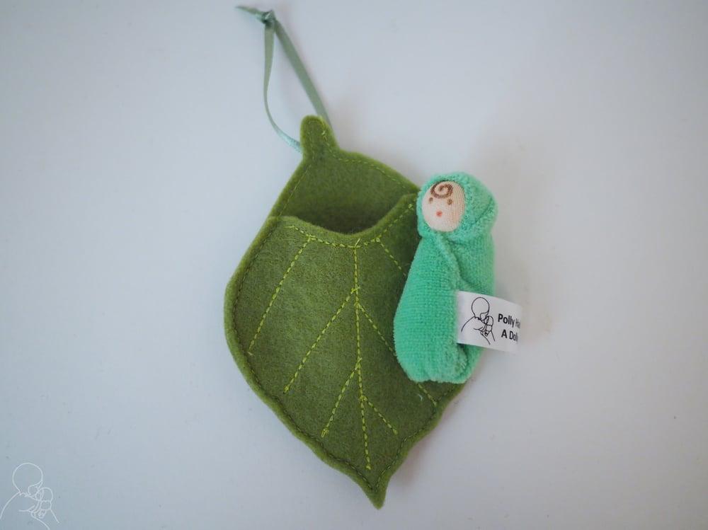 Image of Beech leaf baby