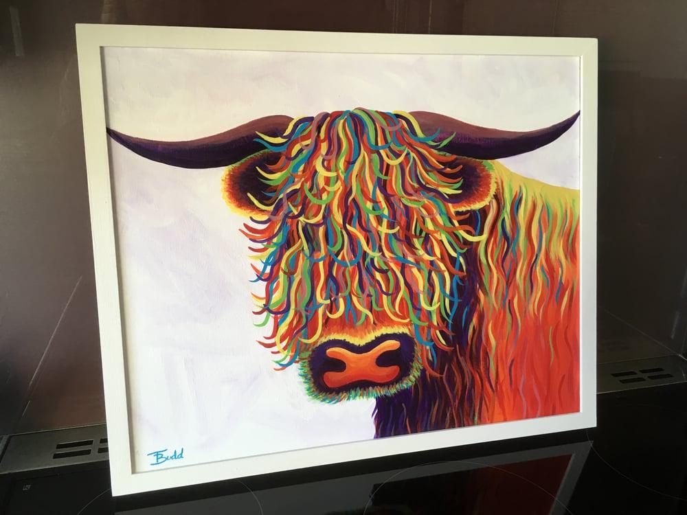 Image of 'Rainbow Highland Cow'