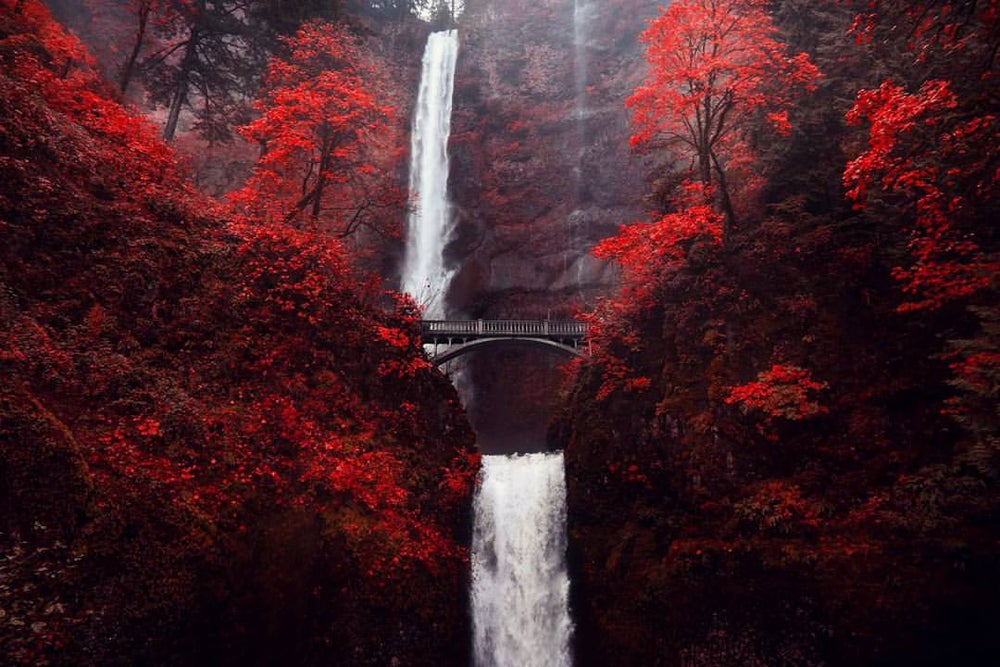 Image of Mutnomah Falls Autumn Red