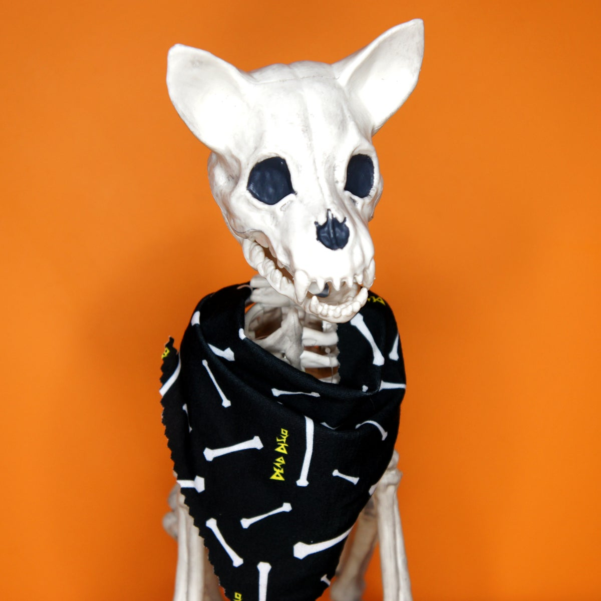 Image of Bones Pet Bandana
