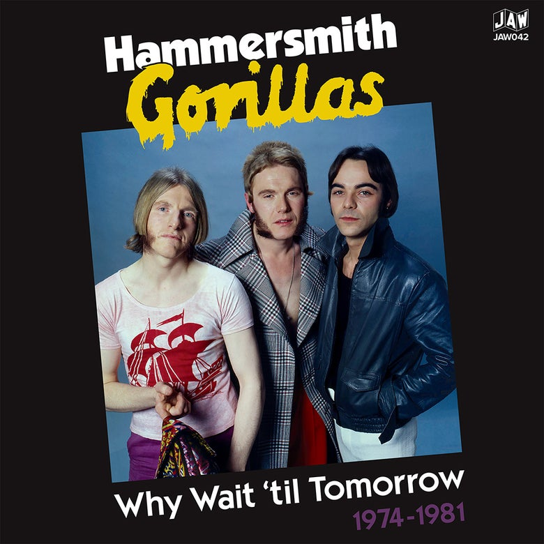 "Image of HAMMERSMITH GORILLAS ""Why Wait 'til Tomorrow 1974-1981"" 2xLP JAW042 *PRE-ORDER"