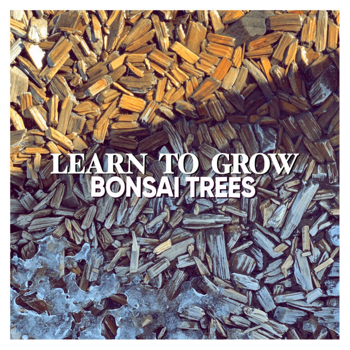 """Image of """"Learn to Grow"""" CD"""