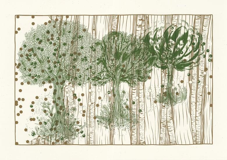 Image of L'arbre – pollens