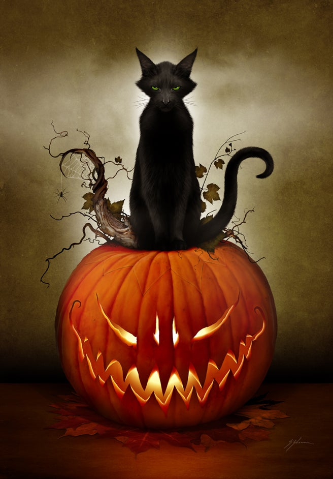 Image of Cat O' Lantern