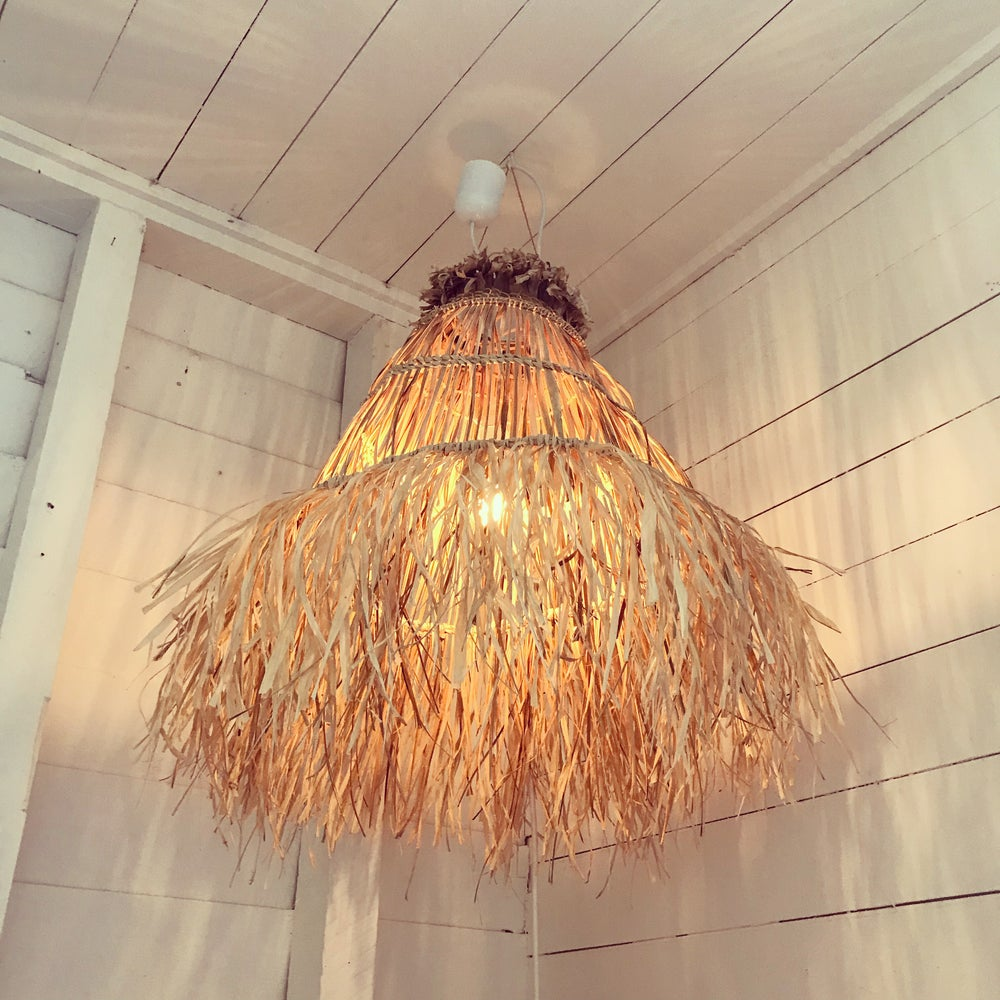 Image of SHOP | LIGHTING Ponytail Palm Pendants