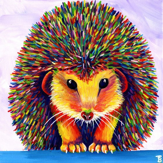 Image of Rainbow Hedgehog