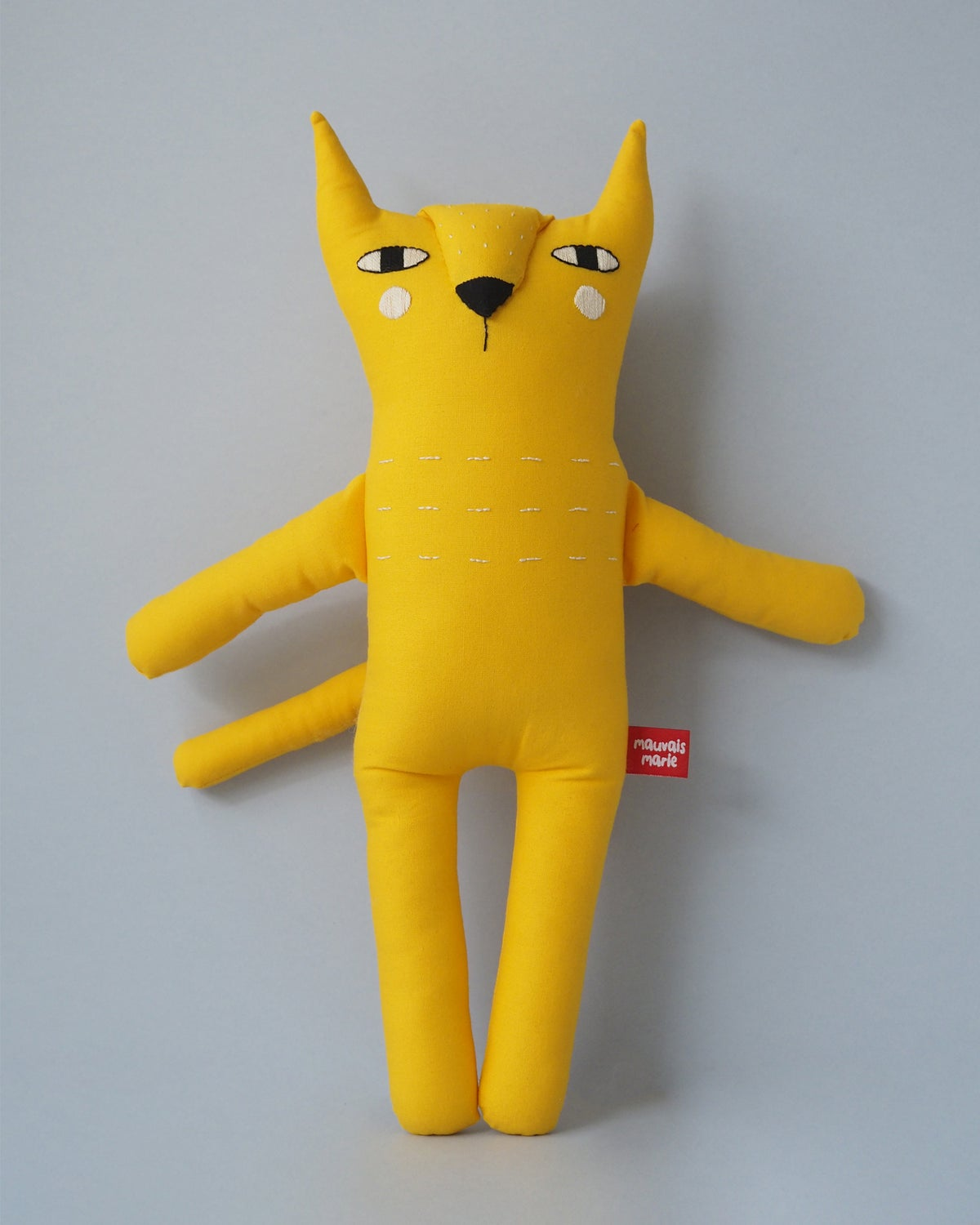 Image of Calvin the Cat
