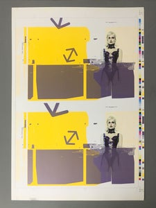 Image of Murray+Vern Catalogue Cover Printer's Proof