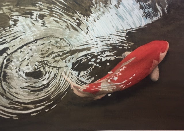 Image of Japanese Koi limited edition gicleé