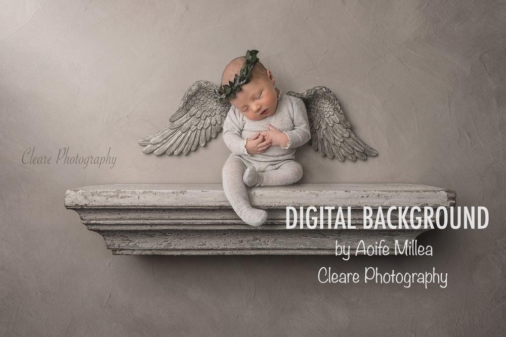 Image of angel shelf newborn digital backdrop