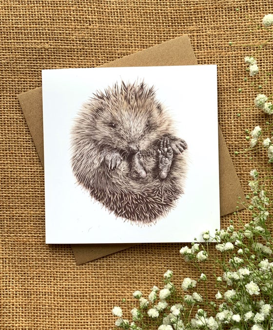 Image of 'Hedgie' Greetings Card