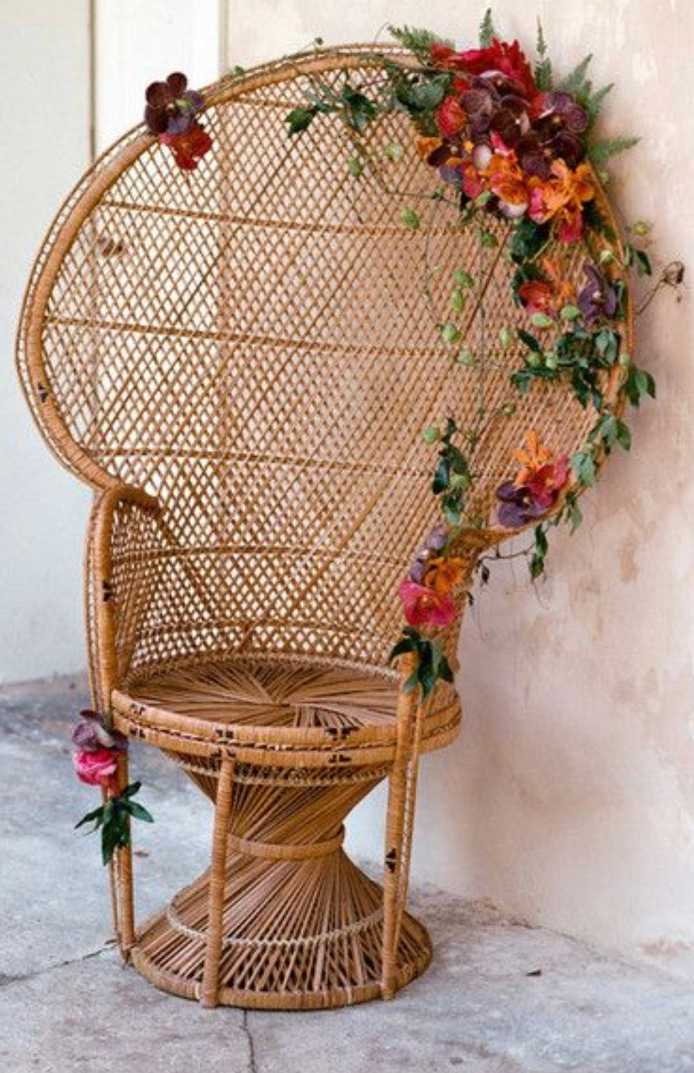 Peacock chair for rent