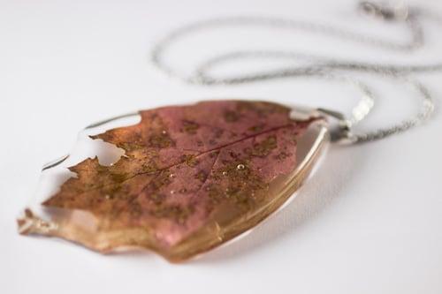 Image of Autumn Oak Leaf Extra-Large #1