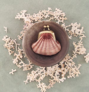 Image of Shell purse, tiny velvet kisslock coin pouch