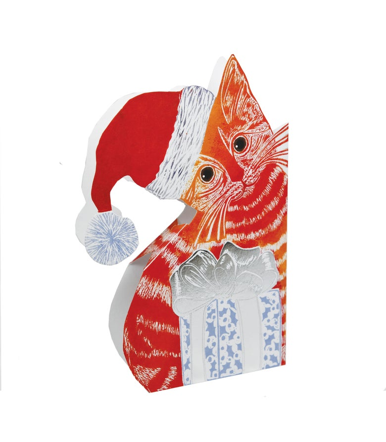 Image of Xmas Kitten Foil 3D