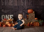 Image of Available 20min. Mini Session Slots