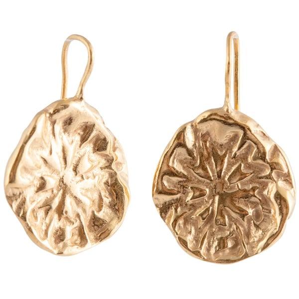 Image of Tesoro disc earrings