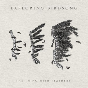 "Image of Exploring Birdsong ""TTWF"" Hands Bundle"