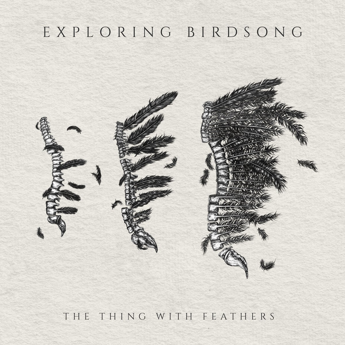 "Image of Exploring Birdsong ""The Thing With Feathers"" EP"