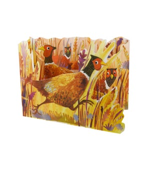 Image of Pheasant Field Tri-fold
