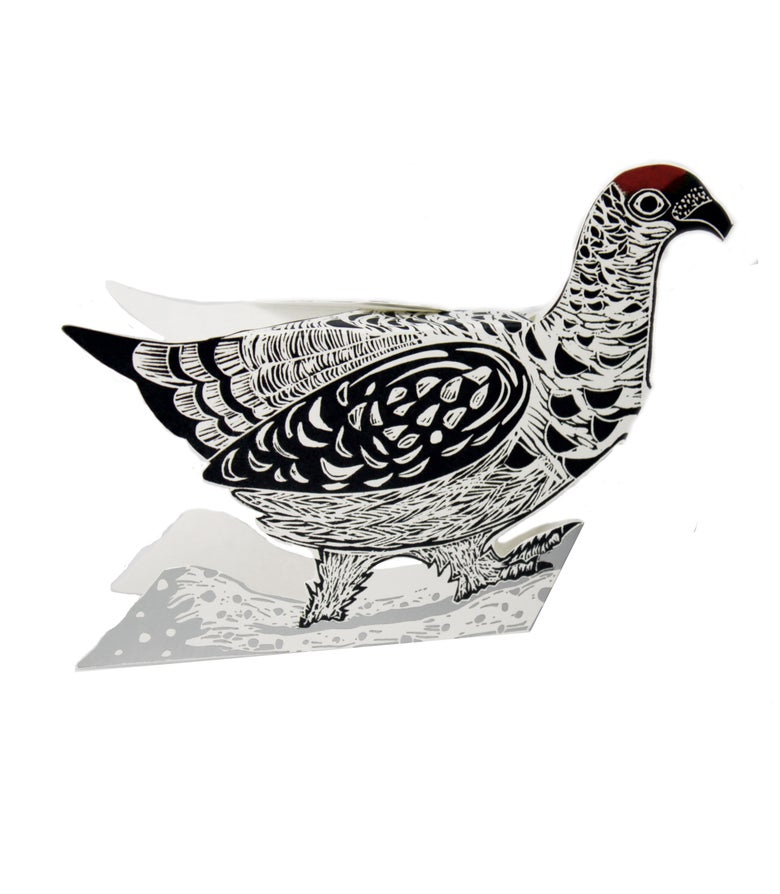 Image of Ptarmigan Foil 3D