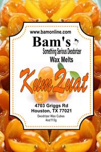 Image of Kumquat Wax Melts