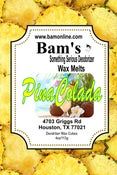 Image of Pina Colada Wax Melts