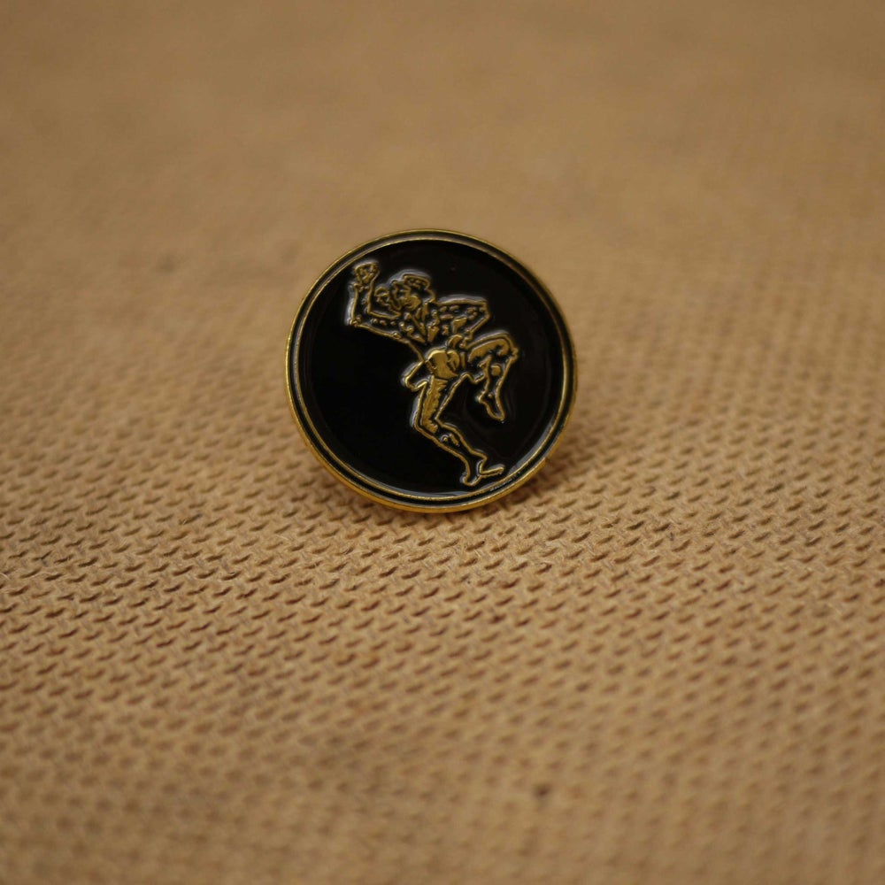 Image of 20th Anniversary Gold Pin