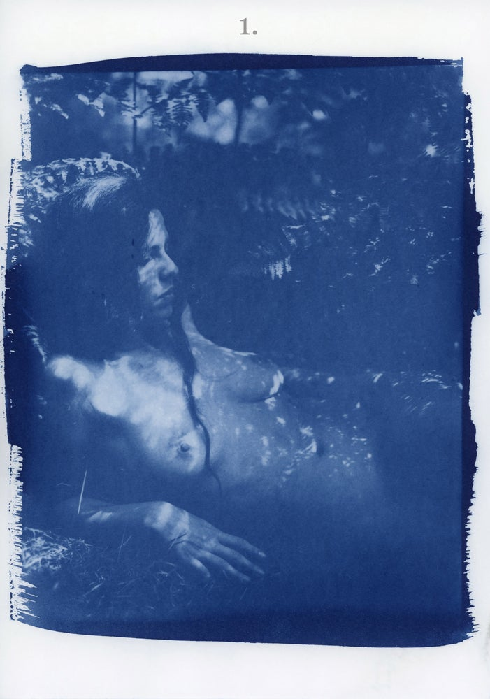 Image of Limited edition Kelsey Dylan cyanotypes