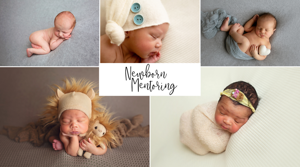 Image of Newborn Posing Workshop - Kansas City