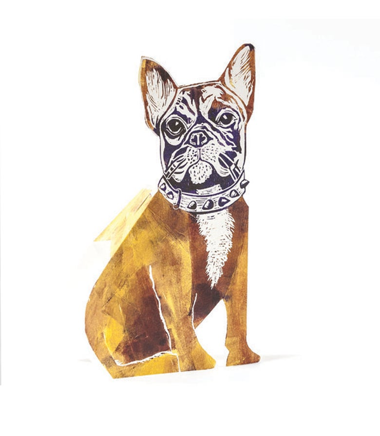 Image of Bull Dog 3D