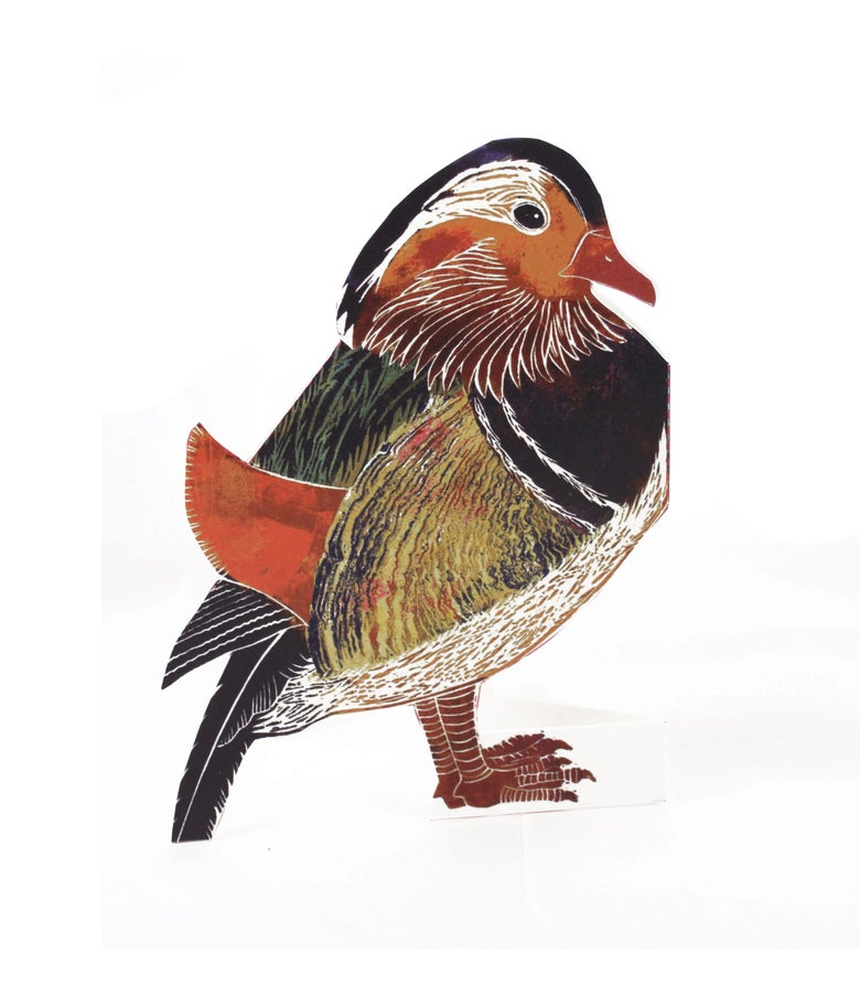Image of Mandarin Duck 3D
