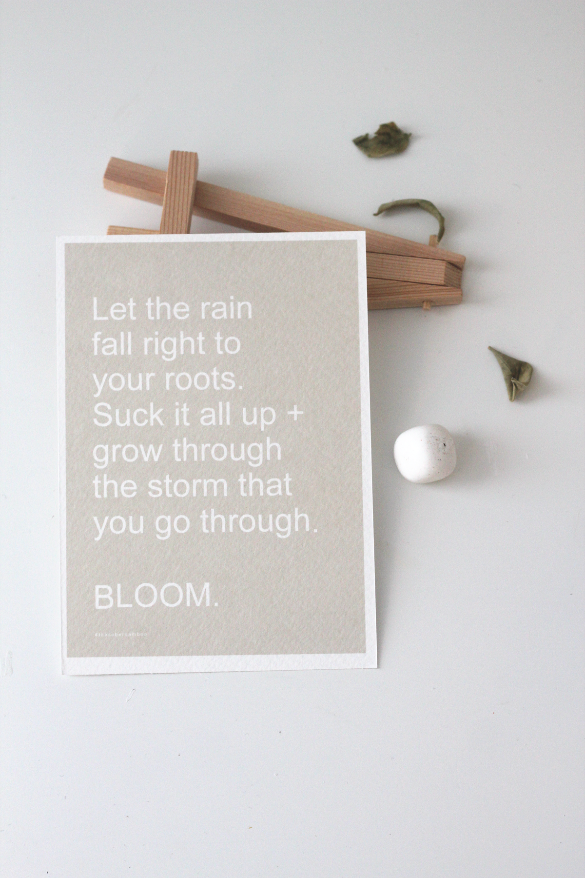 Image of BLOOM  \\ A6 Affirmation Card