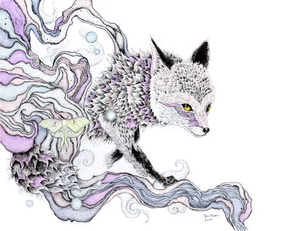 Image of Red Fox & Luna Moth