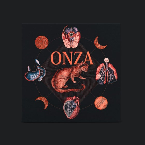 "Image of DF:013 Onza-""Onza"""
