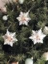 All white Snowflake Conchita