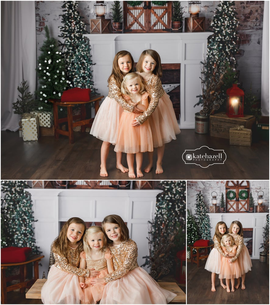 Image of 2019 Holiday Mini Session $225