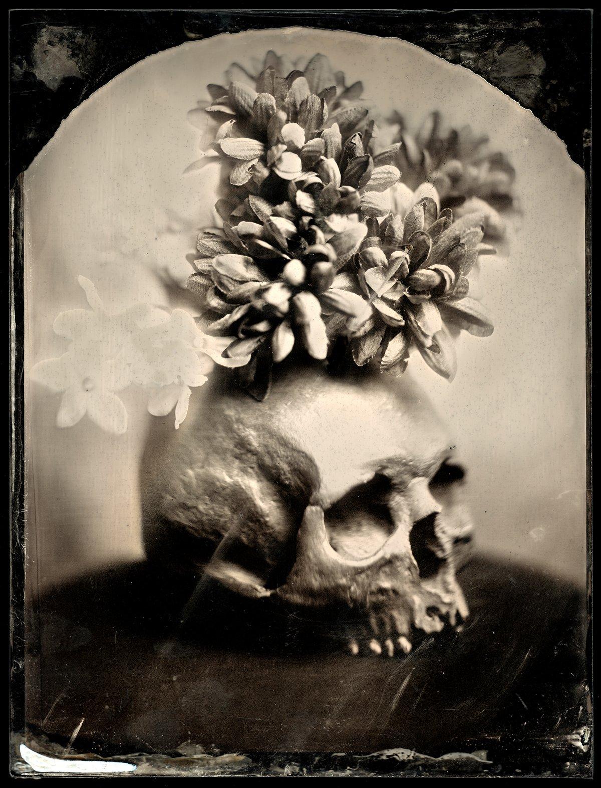 Image of Skull & Flowers