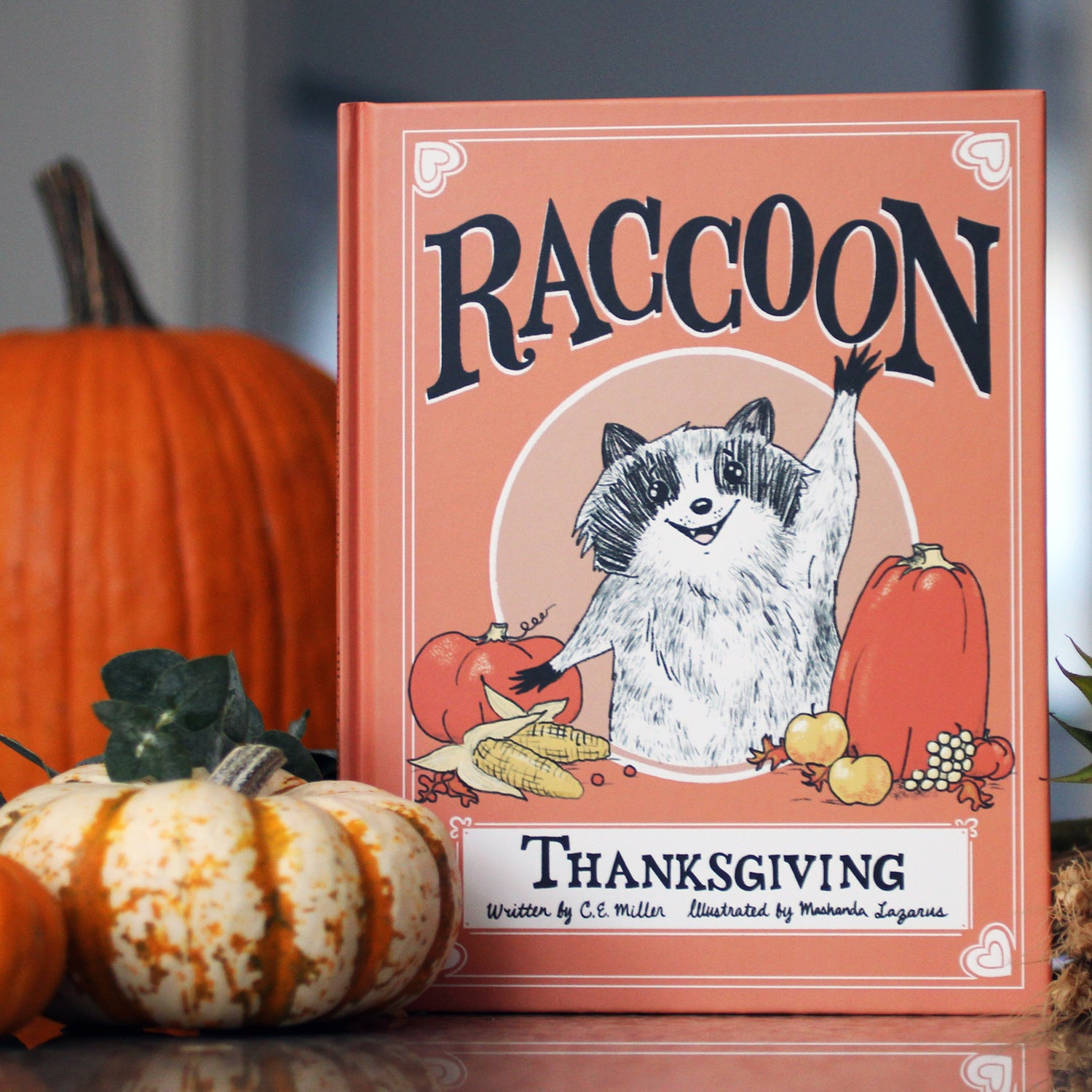 Image of Raccoon Thanksgiving