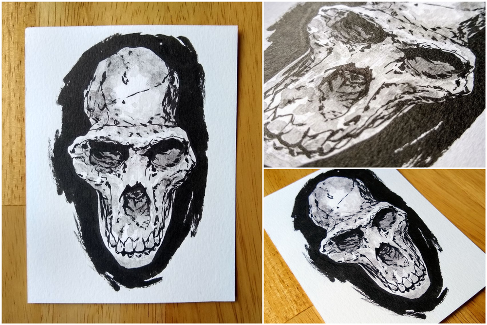 Image of Original ink drawing of Hominid skull
