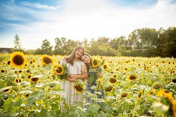 Image of Sunflower Field  $210 you pay half to book.