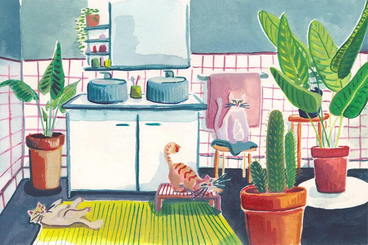 Image of A4 Illustration