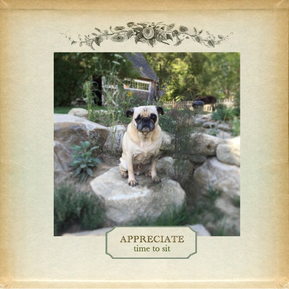 Image of Sweet Pug/Wood Print