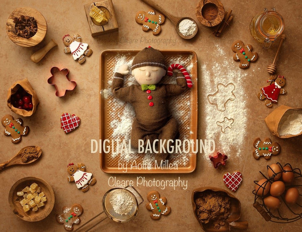 Image of Christmas newborn digital backdrop